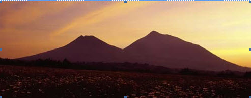 Paysage colline Rwanda